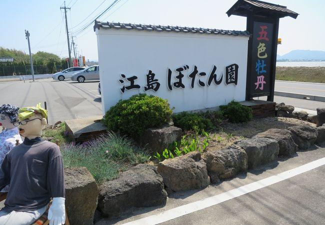 江島牡丹園
