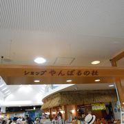 海洋博公園のお土産店