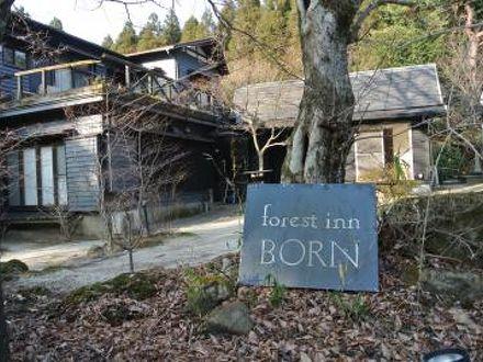 forest inn born 写真