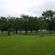 横に広い公園もあっていい感じ