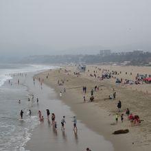 大きな砂浜ではありました。