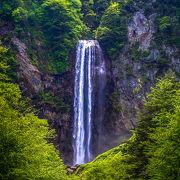 迫力のある 大滝 です。新緑が 綺麗です~