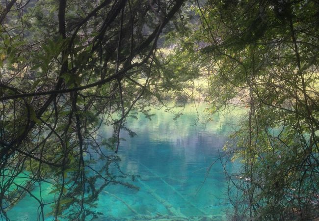 水の色が澄んできれいな写真が撮れる