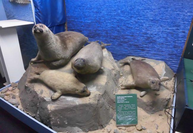 ブリヤート自然博物館