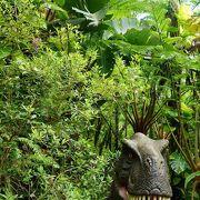 お菓子御殿もいいけど恐竜の森も面白い。