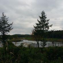 人造湖の周りにコテージやドッグランレストランなどあります
