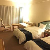 奥のベッドは人が寝れるサイズ