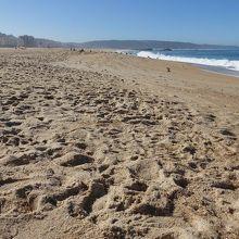 砂はこんな感じ。