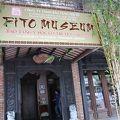 写真:ベトナム伝統医学博物館