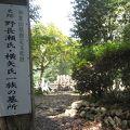 写真:野長瀬一族の墓