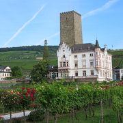 ライン川とぶどう畑に挟まれた古城の中です