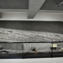 発見当時の貝塚復元