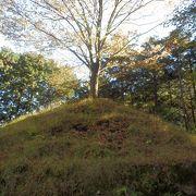 紅葉を見に箱根旧東海道を歩きました