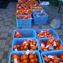 店頭には袋入りの「柿」がズラリと並べてありました。