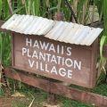 写真:ハワイ プランテーション ビレッジ