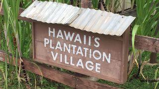 ハワイ プランテーション ビレッジ
