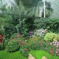 レドニツェ城 温室