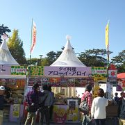 大道芸のフェスティバル