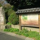 小丸山公園 (小丸山城址)