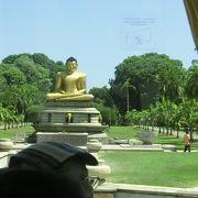 大きな仏像が目印です
