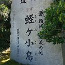 蛭ヶ小島 (蛭ヶ小島公園)