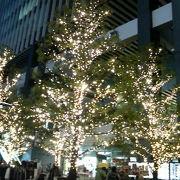 巨大ツリーや街路樹ライトアップなどで電気街が華やかに