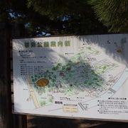 松が見事な海辺の公園
