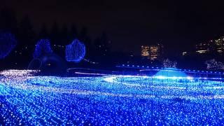 東京ミッドタウン クリスマスイルミネーション