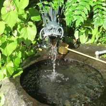 天成園庭園の湧き水です