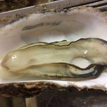 おいしい牡蠣
