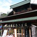写真:苔乃茶屋