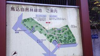 馬込自然林区民緑地