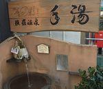四季の彩 (強羅店)