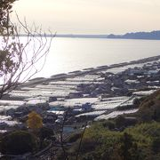 久能山から眺める海岸線は特にきれい
