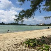超遠浅のビーチ。日陰はあるので、小さな子供を泳がすにはいいですね。