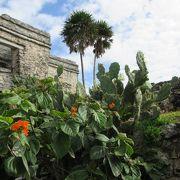 カリブ海に面したメキシコ遺跡