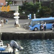 透明度が高い初島港の海