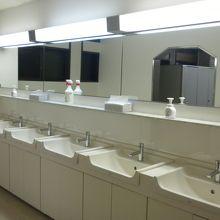 洗面所も各部屋には無いが多数設置されています。トイレも多数