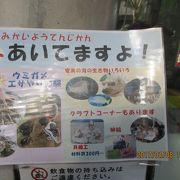 奄美大島の映像が見られる