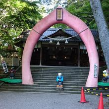 こんなに面白い神社は初めて