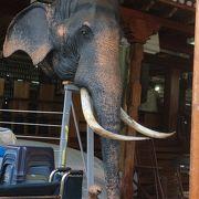 象の顔が飾ってあります