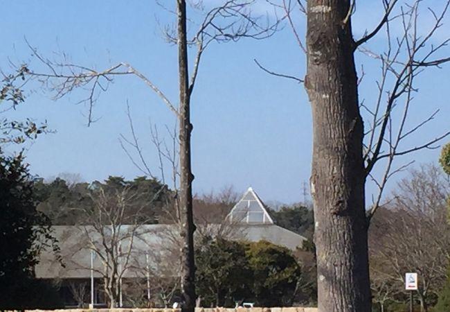 兵庫県立三木山森林公園