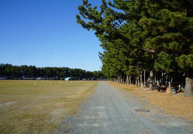渚園運動公園