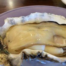 大きくてプリップリの牡蠣