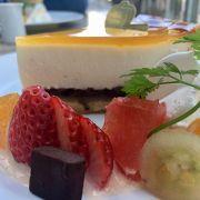 北摂で有名チーズケーキ