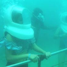 水中でカメラを渡すと、インストラクターが撮ってくれます。