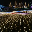 木曽三川公園センター 冬の光物語