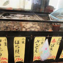 ホラ貝は内臓に毒が有るので身しか持ち帰れない