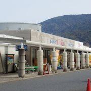 桜島の向かい