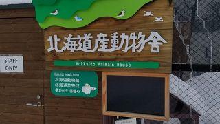 北海道の身近な動物展示